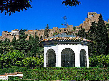 Alcazaba viewed from gardens, Malaga, Andalucia, Spain, Europe