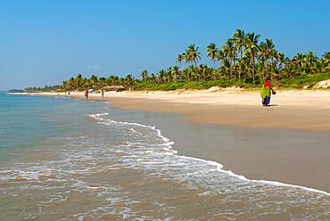 View along beach, Benaulim, Goa, India, Asia