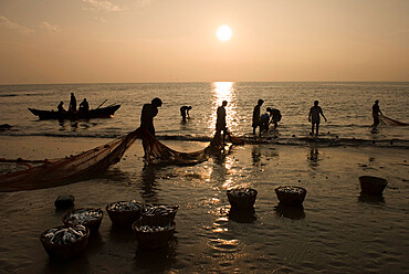 Local fishermen landing catch at sunset, Benaulim, Goa, India, Asia