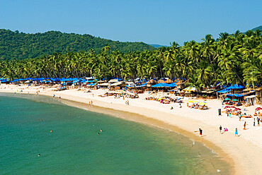 View over Palolem beach, Palolem, Goa, India, Asia