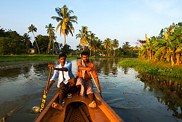 Canoeing along the Backwaters, near Alappuzha (Alleppey), Kerala, India, Asia