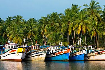 Fishing boats along the Backwaters, near Alappuzha (Alleppey), Kerala, India, Asia