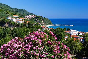 View over resort, Agios Ioannis, Pelion Peninsula, Thessaly, Greece, Europe