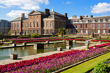 Kensington Palace gardens with tulips, Kensington Gardens, London, England, United Kingdom, Europe