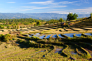 Terraced rice fields and Shan hills, near Kengtung, Shan State, Myanmar (Burma), Asia