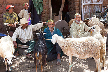 Monday Berber market, Tnine Ourika, Ourika Valley, Atlas Mountains, Morocco, North Africa, Africa