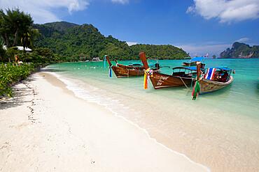 Long-tail boats and beach of Ao Dalam bay, Koh Phi Phi, Krabi Province, Thailand, Southeast Asia, Asia