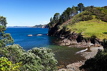 Coastline near Tuateawa, Coromandel Peninsula, Waikato, North Island, New Zealand, Pacific