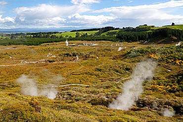 Craters of the Moon Thermal Area, Taupo, North Island, New Zealand, Pacific