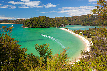 Torrent Bay, Abel Tasman National Park, Nelson region, South Island, New Zealand, Pacific