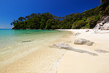 Frenchman's Bay beach, Abel Tasman National Park, Nelson region, South Island, New Zealand, Pacific