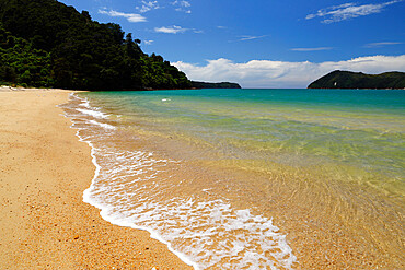 Apple Tree Bay beach, Abel Tasman National Park, Nelson region, South Island, New Zealand, Pacific
