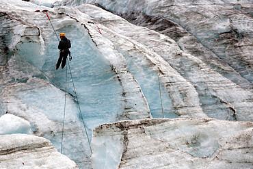 Ice climber, Fox Glacier, West Coast, South Island, New Zealand, Pacific