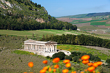 View over the Greek Doric Temple, Segesta, Sicily, Italy, Europe