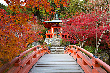 Japanese temple garden in autumn, Daigoji Temple, Kyoto, Japan, Asia