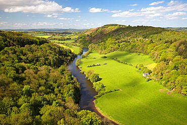 View over Wye Valley from Symonds Yat Rock, Symonds Yat, Forest of Dean, Herefordshire, England, United Kingdom, Europe