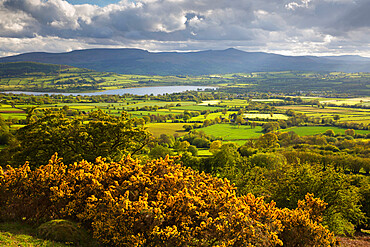 View over Llangorse Lake to Pen Y Fan from Mynydd Troed, Llangorse, Brecon Beacons National Park, Powys, Wales, United Kingdom, Europe