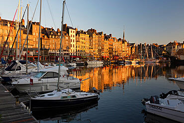 Saint Catherine Quay in the Vieux Bassin at sunrise, Honfleur, Normandy, France, Europe