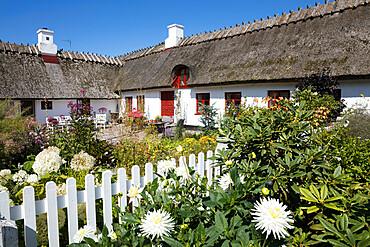 Traditional white thatched Danish cottage and garden with picket fence, Gilleleje, Kattegat Coast, Zealand, Denmark, Scandinavia, Europe