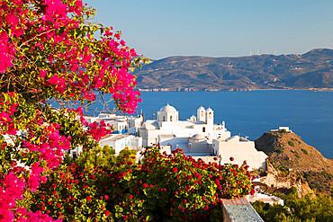 White old town of Plaka and Milos Bay with colourful bougainvillea, Plaka, Milos, Cyclades, Aegean Sea, Greek Islands, Greece, Europe
