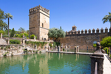 Gardens of the Alcazar de Los Reyes Cristianos, UNESCO World Heritage Site, Cordoba, Andalucia, Spain, Europe