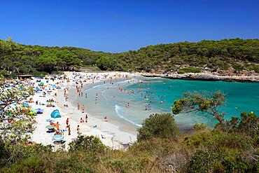 Parc Natural de Mondrago S'Amarador beach, Mallorca (Majorca), Balearic Islands, Spain, Mediterranean, Europe