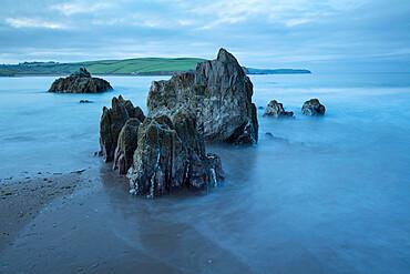 Rocks on beach at low tide at dawn, Bigbury-on-Sea, Devon, England, United Kingdom, Europe