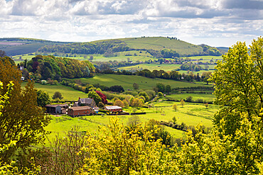 View from Shaftesbury over Cranborne Chase AONB scenery to Melbury Beacon, Shaftesbury, Dorset, England, United Kingdom, Europe