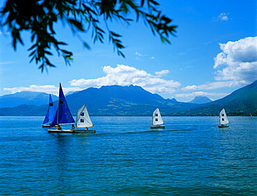 Sailing dinghies, Annecy, Lake Annecy, Rhone Alpes, France, Europe