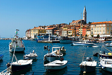 Old Town and St. Euphemia's Church, Rovinj, Istria, Croatia, Adriatic, Europe