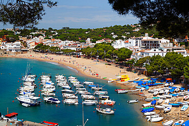 Llafranc, near Palafrugell, Costa Brava, Catalonia, Spain, Mediterranean, Europe