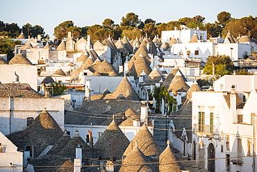 Traditional Trulli style houses in Alberobello, UNESCO World Heritage Site, Puglia, Italy, Europe