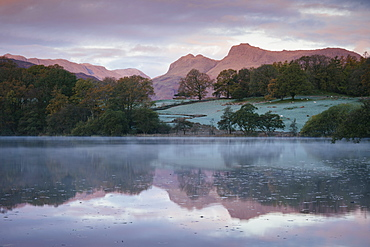 Langdale Pikes at dawn from Loughrigg Tarn, Lake District National Park, UNESCO World Heritage Site, Cumbria, England, United Kingdom, Europe