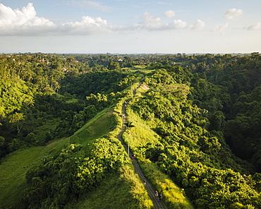 Campuhan Ridge, Ubud, Bali, Indonesia, Southeast Asia, Asia