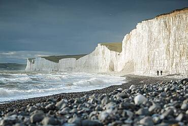 Birling Gap and the Seven Sisters chalk cliffs, East Sussex, South Downs National Park, England, United Kingdom, Europe