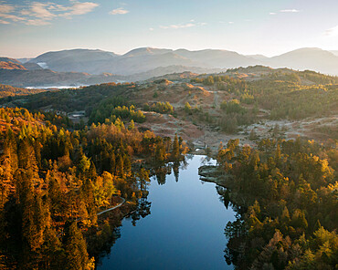 Aerial view over Tarn Hows at dawn, Lake District National Park, Cumbria, England, United Kingdom