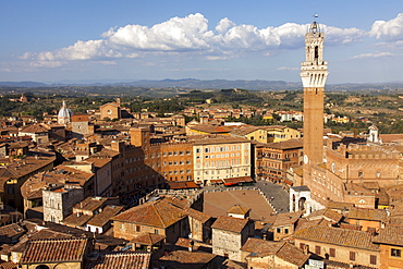 View of Siena Palazzo Publico and Piazza del Campo, UNESCO World Heritage Site, Siena, Tuscany, Italy, Europe