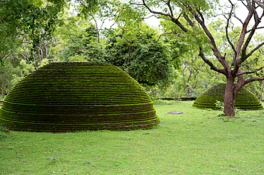 A moss covered dagoba dome in the Kiri Vihara temple ruins at Polonnaruwa, UNESCO World Heritage Site, Sri Lanka, Asia