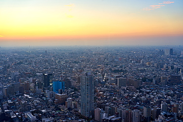 Cityscape view at sunset from the Tokyo Metropolitan Government Building, Tokyo, Japan, Asia