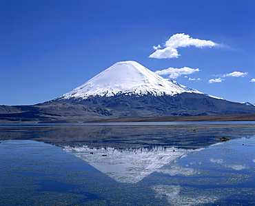 Parinacota volcano and Lake Chungara in the Lauca National Park, Chile, South America