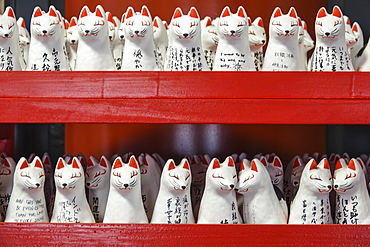 Japanese lucky cat models, Tokyo, Japan, Asia