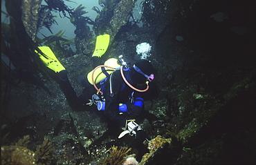 Diver inside British Blockship Doyle, Scapa Flow, Orkney islands, Scotland, UK