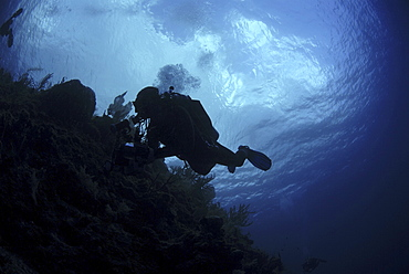 Diver in silhouette, Grand Cayman Island, Cayman Islands, Caribbean