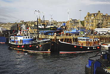 Colourful Dive Charter boats in Stromness harbour, Scapa Flow, Orkney Islands, Scotland, UK