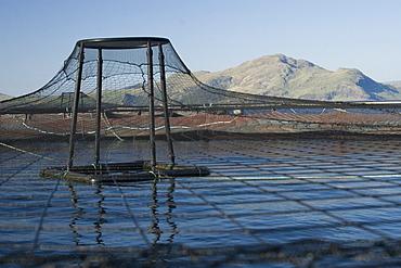 Salmon fish farm.  Hebrides, Scotland.