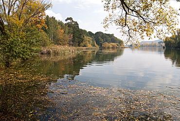 Nursery Bay, Lake Burley Griffin, Autumn, Canberra, Australian Capital Territory, Australia - 994-7