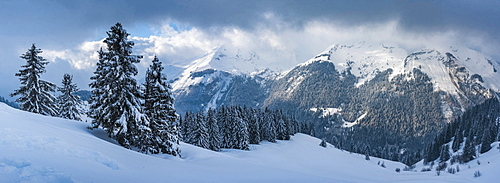 Morzine Ski Area, snowy winter mountain landscape, Port du Soleil, Auvergne Rhone Alpes, French Alps, France, Europe