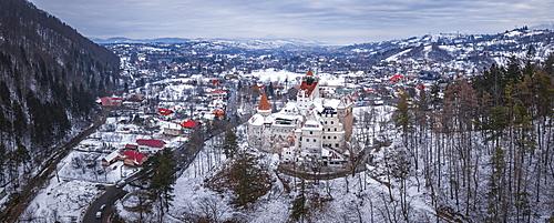 Bran Castle covered in snow in winter, Transylvania, Romania, Europe