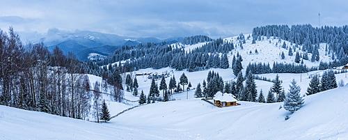 Winter landscape near Bran in the Carpathian Mountains, Transylvania, Romania, Europe