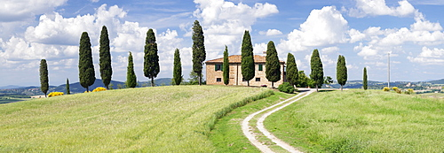 Farm house with cypress trees near Pienza, Val d'Orcia (Orcia Valley), UNESCO World Heritage Site, Siena Province, Tuscany, Italy, Europe